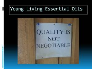 Slide 1 Quality not negotiable