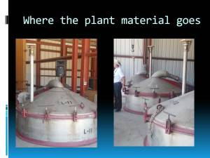 Slide 7 Where the plant material goes