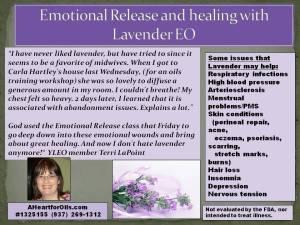 Terri LaPoint - Lavender